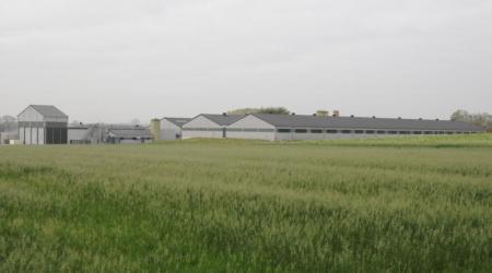 landbouwloodsen