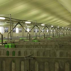 prefabbouw stallen